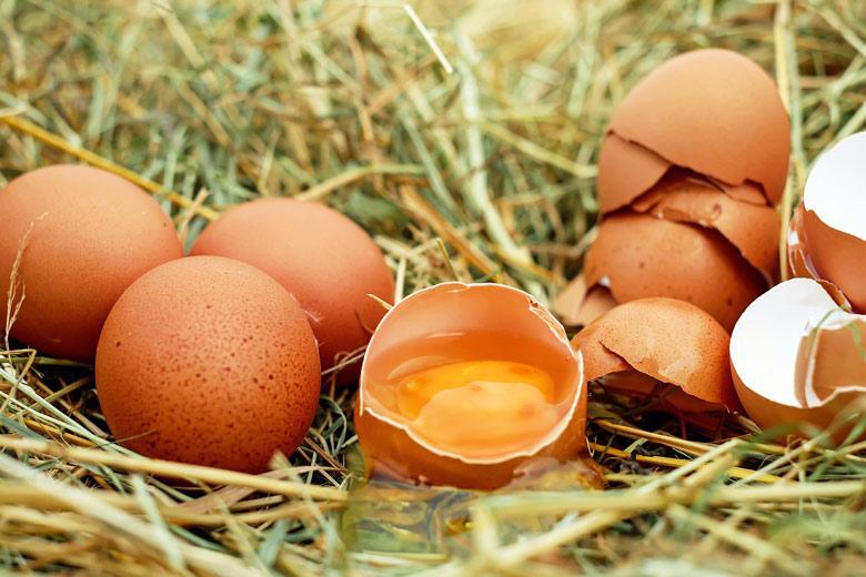 Yema de huevo: Qué es y qué efectos tiene en nuestro organismo